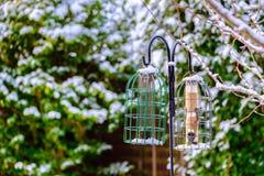 Trädgårds- fågelförlagematare i vinter Arkivbilder
