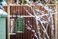 Trädgårds- fågelförlagematare i vinter Arkivfoto