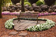 trädgårds- förälskelse royaltyfria foton
