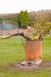Trädgårds- förbränningsugn Arkivfoton