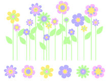 trädgårds- fjäder för blomma Arkivfoto