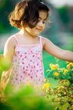 trädgårds- flicka för blomma arkivbild