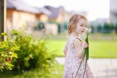 trädgårds- flicka som little hjälper Arkivbild