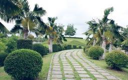 Trädgårds- gå bana Royaltyfria Bilder
