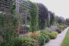 Trädgårds- gångbana Royaltyfri Bild