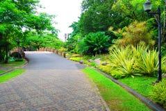 Trädgårds- gångbana Arkivfoton