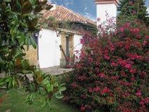 Trädgårds- gammalt hus royaltyfri foto