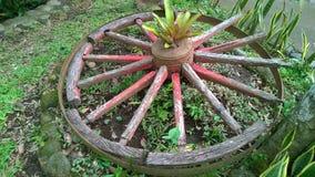 Trädgårds- garneringar Arkivfoto