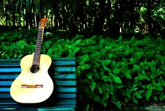 trädgårds- gitarr royaltyfria bilder