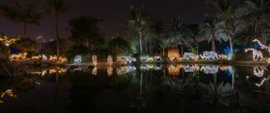 Trädgårds- glöd Dubai, UAE Arkivfoton