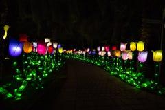 Trädgårds- glöd Dubai, UAE Royaltyfri Fotografi