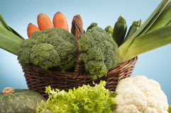 Trädgårds- grönsak Royaltyfri Bild
