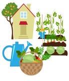 trädgårds- grönsak vektor illustrationer
