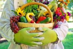 trädgårds- grönsaker för korg Royaltyfri Fotografi