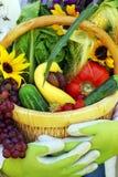 trädgårds- grönsaker för korg Royaltyfri Foto