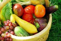 trädgårds- grönsaker för korg Arkivbilder