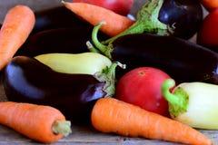Trädgårds- grönsaksortiment Rå aubergine, tomater, morötter, peppar, persiljabakgrund Olik grönsakbakgrund Royaltyfri Bild