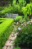 trädgårds- grönt frodigt Arkivfoton