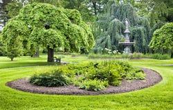 trädgårds- green royaltyfri bild