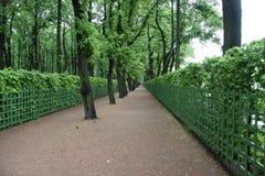 trädgårds- green för gränd Arkivfoto