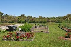 trädgårds- greyfield Royaltyfria Bilder