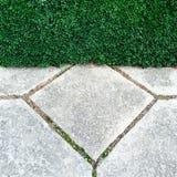 Trädgårds- häck- och stentegelplattor Royaltyfri Fotografi