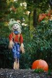 trädgårds- halloween för skärm tacksägelse Fotografering för Bildbyråer