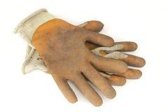 Trädgårds- handskar arkivfoto