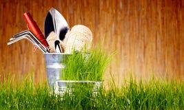 Trädgårds- hjälpmedel för höst Arkivbild