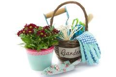 Trädgårds- hjälpmedel i en korg och chrysanths Royaltyfri Foto