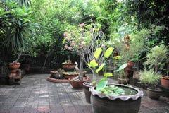 trädgårds- home liggande Royaltyfri Bild