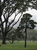 trädgårds- imperialistiska tokyo Arkivfoton