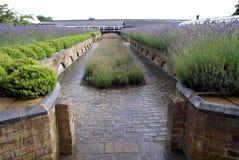 Trädgårds- ingång trädgårds- bana eller bana Fotografering för Bildbyråer