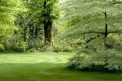 trädgårds- irländskt traditionellt Arkivfoto