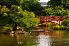 trädgårds- japan för bro Arkivbilder