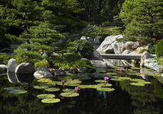 trädgårds- japan för bro Royaltyfria Foton