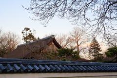 trädgårds- japanes över philadelphia solnedgångvinter Royaltyfri Foto