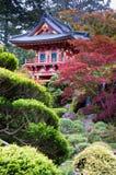 trädgårds- japansk tea Royaltyfria Bilder