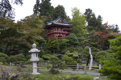 trädgårds- japansk tea Royaltyfri Bild