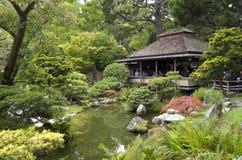 trädgårds- japansk tea fotografering för bildbyråer