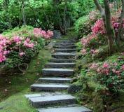 trädgårds- japansk trappa Royaltyfri Fotografi