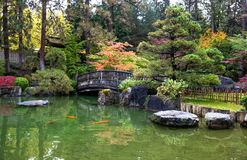trädgårds- japansk zen Arkivbild