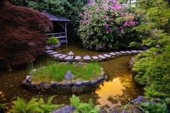 trädgårds- japanskt damm Royaltyfria Bilder