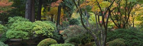 trädgårds- japanskt trä för bro royaltyfria foton