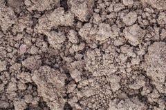 Trädgårds- jord för lera Arkivbilder