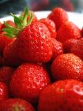 trädgårds- jordgubbe royaltyfri foto
