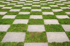 trädgårds- jordning royaltyfria foton