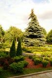 trädgårds- kremlin moscow Arkivfoton