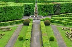 trädgårds- kromeriz för blomma Arkivbild