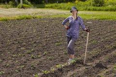 trädgårds- kvinna royaltyfri fotografi